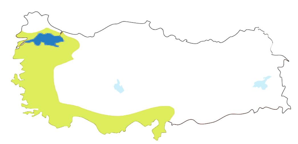 Akdeniz İklimi.jpg